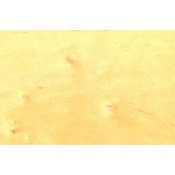 Obrzeże OLCHA 50mb, szerokość:22mm
